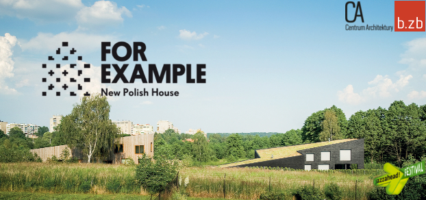 for example-new polish house